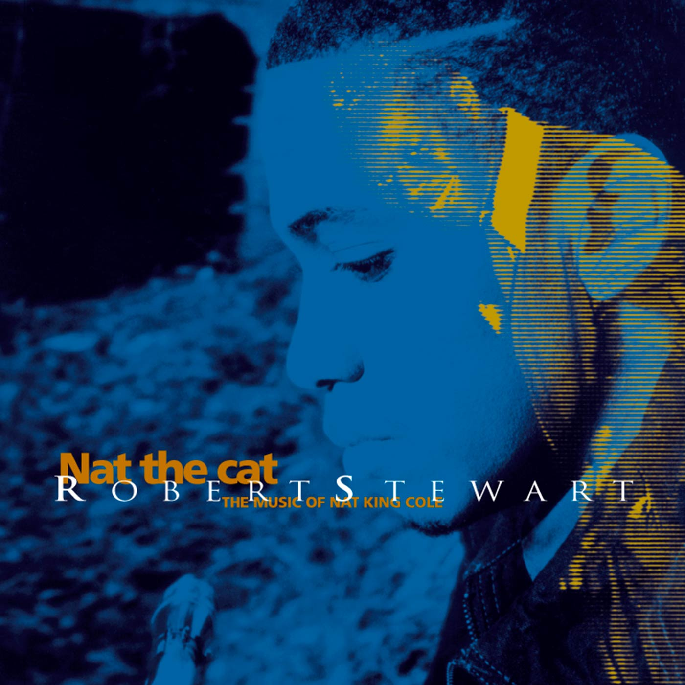 Nat The Cat/The Music Of Nat King Cole - Robert Stewart
